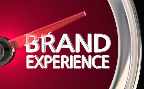 Brand experience: gli elementi che le vetrine refrigerate personalizzate devono rispettare